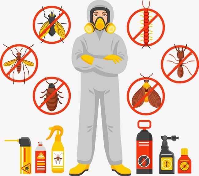 مكافحة حشرات بالعيدابي